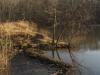 pond dam_03.18.14_2178.jpg