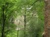 2012-05-05_STHS_SpringWalk_NH_22