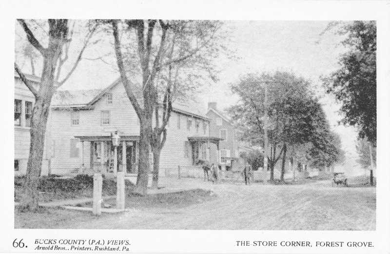 The Store Corner, Forest Grove