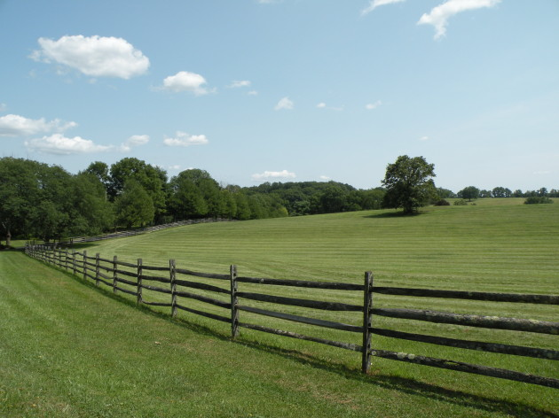 Pasture on Meetinghouse Road
